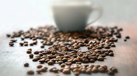 Differences-entre-les-melanges-de-cafe-Arabica-et-Robusta